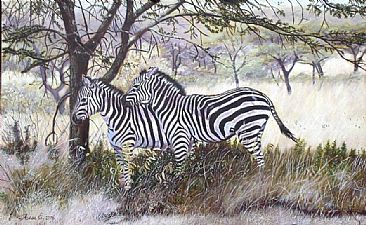 Harmony - Zebra in Lake Nakuru National Park - Kenya by Theresa Eichler