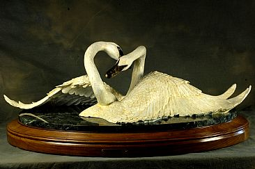 Together Forever - Trumpeter Swans  by Christine Knapp