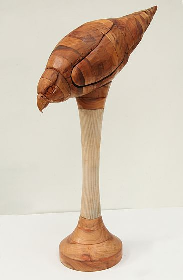 Stooping Falcon - woodcarving of life-size falcon by Martin Hayward-Harris