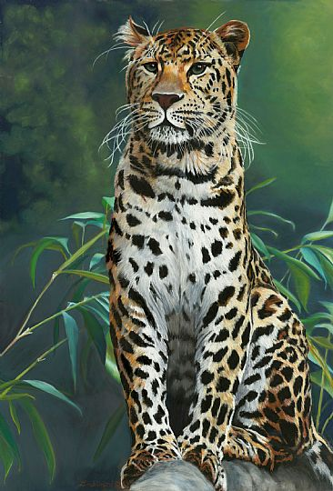 leopard painting art by patsy lindamood