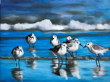 Shore Line Sanderlings - Sanderlings by Patsy Lindamood
