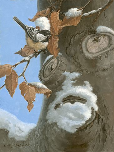 Oh, The Stories He Could Tell - Chickadee in an American beech tree by Mary Louise Holt