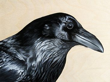 Raven - Raven by Julia Hargreaves