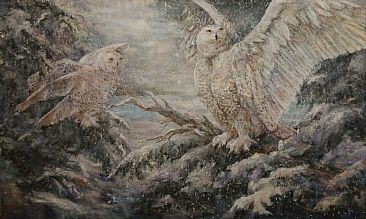 Snowy Owls - Snowy Owls in a snow storm by Sarah Baselici