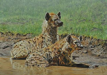 No Laughing matter - Spotted Hyenas by Guy Combes