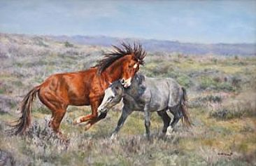Gotcha - Wild mustangs of Sand Wash Basin by Michelle McCune