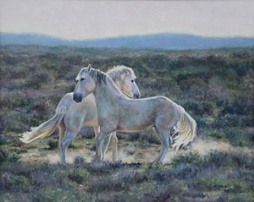 Sunlit Sonata - Wild mustangs of Sand Wash Basin by Michelle McCune