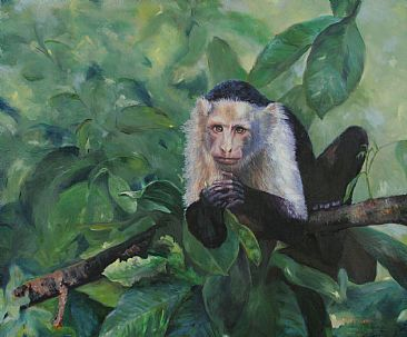 Contemplation - White Faced Capuchin Monkey by Michelle McCune