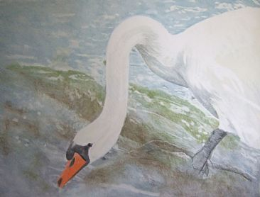 from the source. ( the swan) -  by Hilde_Aga Brun