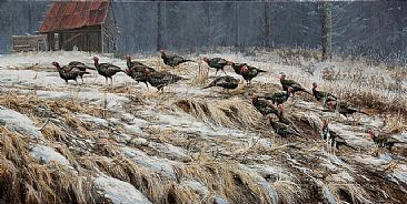 Turkey Walk - Wild Turkey by Suzie Seerey-Lester