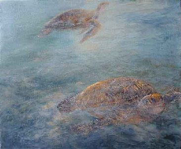 Drifting - sea turtles  by Sunny Franson