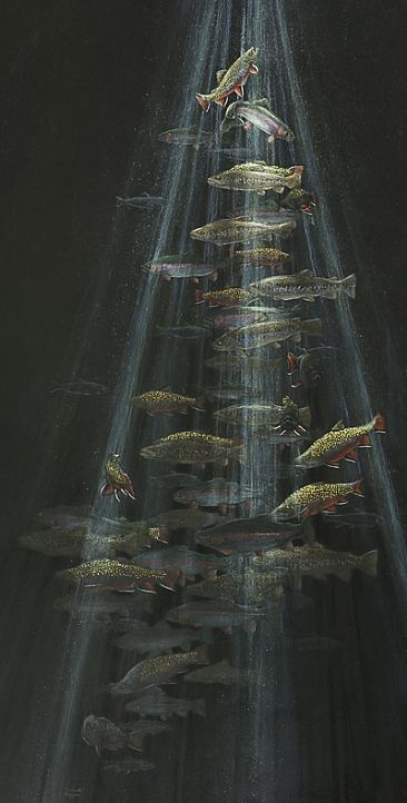 Trout sink - fish - Brook, Brown, Rainbow Trout by Vicki Ferguson