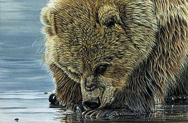 The Beachcomber - Grizzley Bear by Brenda Angelstad