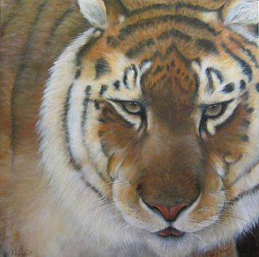 Khasam - Siberian Amur Tiger - Tiger - Big Cats by Wendy Palmer