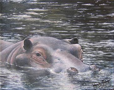 Wading Hippo - Hippopotamus by Wendy Palmer