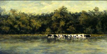 Cooling Off - Cows cool off in the Mississippi river by Linda Walker