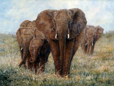 Elephant Walk - African Elephants by Linda Walker