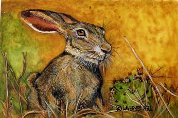March Madness  (sold) - Jackrabbit by LaVerne Hill
