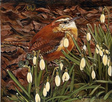Wren and snowdrops - birds by LaVerne Hill
