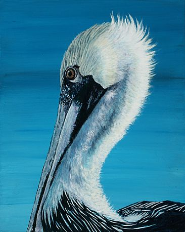 - Brown Pelican by Eva Stanley