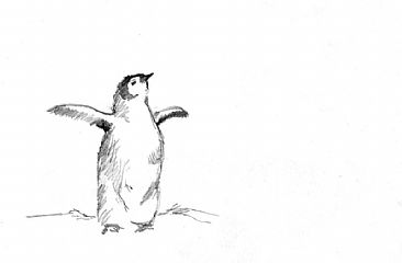 Emperor Penguin Chick Study 6 -  by Sharon K. Schafer