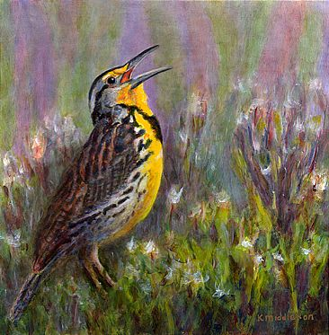 Belting Out a Tune - Western Meadowlark sing in sage country by Kim Middleton
