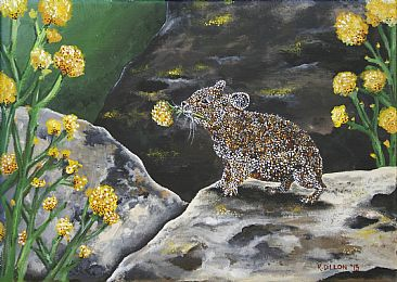 Pika Getting Ready for Winter - Pika by Rachel Dillon