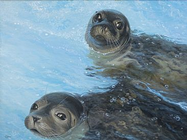 Rescue Girls - Harbor seal pups by Del-Bourree Bach