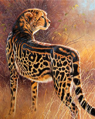 Royalty-King Cheetah - king cheetah by Cynthie Fisher