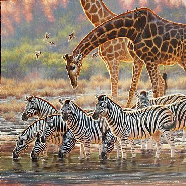 Happy Hour - giraffe and zebra by Cynthie Fisher