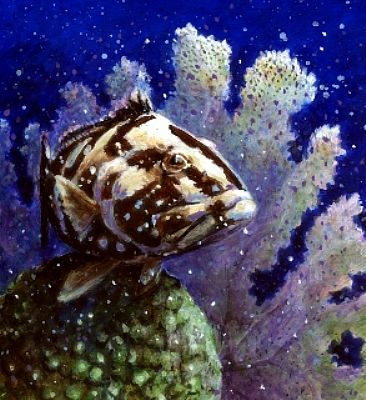 Marine life painting art by wayne chunat for Sea life paintings artists