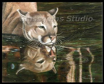 Wild Reflections - Mountain Lion by Gemma Gylling