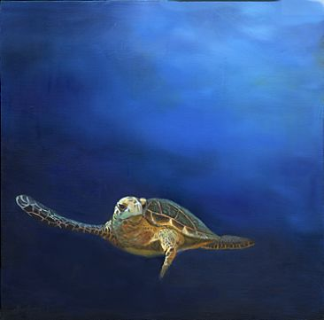 Blue Beyond - Hawksbill Sea Turtle by Dianne Munkittrick