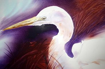 Garça II - Great Egret by Kitty Harvill