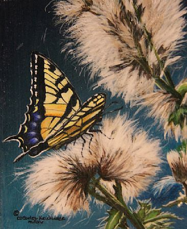 Thistle Down - Thistles & Butterfly by Cindy Sorley-Keichinger
