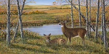 Bridal Pair - A pair of Whitetail deer in a fall setting by Cindy Sorley-Keichinger