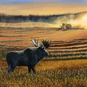 Conflict of Interest - Harvest scene with a moose looking on by Cindy Sorley-Keichinger