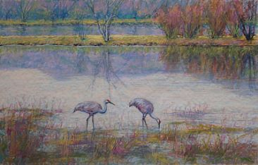 Bosque Afternoon - Sandhill Cranes at Bosque del Apache NWR, NM by Sandra Place