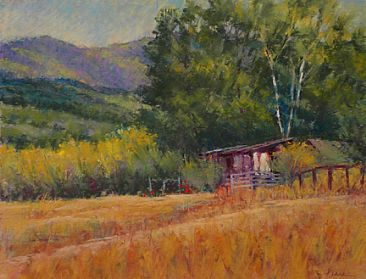 Quiet Afternoon - rural scene near Sonoma, CA by Sandra Place