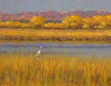 Waiting for Sunset - Great Egret, Bosque del Apache NWR, NM by Sandra Place