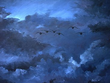 Ahead of evening storm - Gray lag geese by Ahsan Qureshi