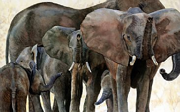 Elephant Family an a Hot Afternoon - Elephant breeding herd from Zambia by Linda DuPuis-Rosen