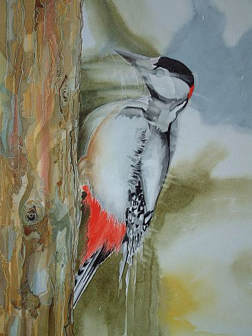 Spotted woodpecker - Woodpecker in move by Christian Dache