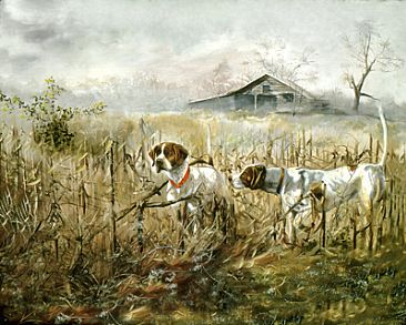 Corn Field Pointers -  by Taylor White