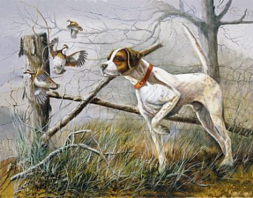 Fence Post Encounter - English Pointer with quail by Taylor White