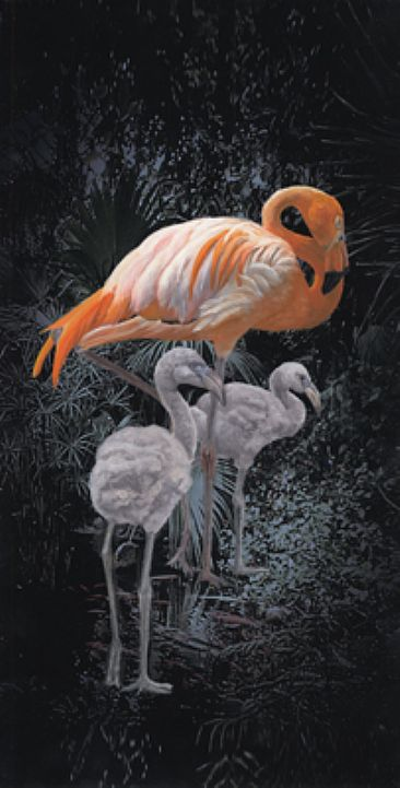Flamingo (Left) - Flamingo with young by Taylor White