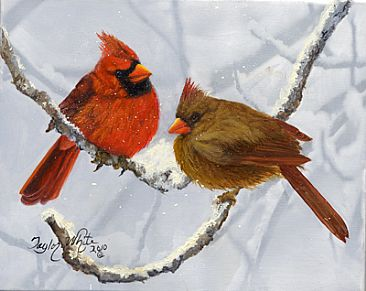 Snow in January Cardinals - Winter Cardinals by Taylor White