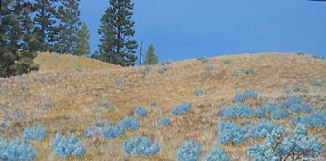 Sagebrush and Sky - Landscape - Okanagan Valley by Jason Kamin