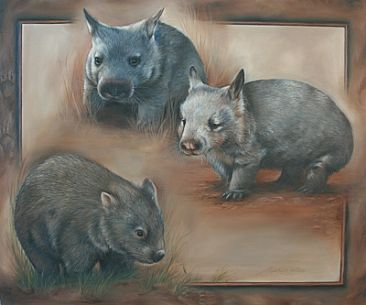 The Wombat - Three Species Montage - Australian Wombat by Michelle Caitens