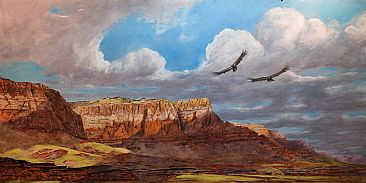 Condors Soaring The Vermilion Cliffs - Condors Over The Vermilion Cliffs National Monument by Rob Dreyer